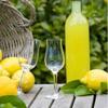 Домашние ликеры — вкусные и простые в приготовлении