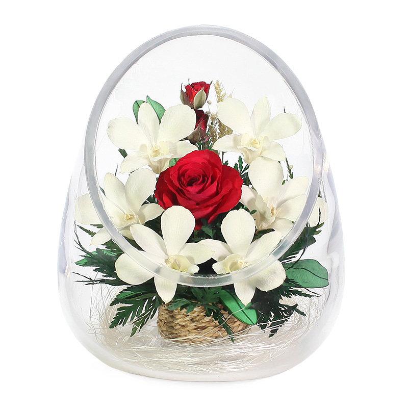 дегидратированные цветы в стекле